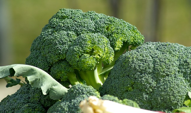 diabetes diet broccoli superfood health benefits
