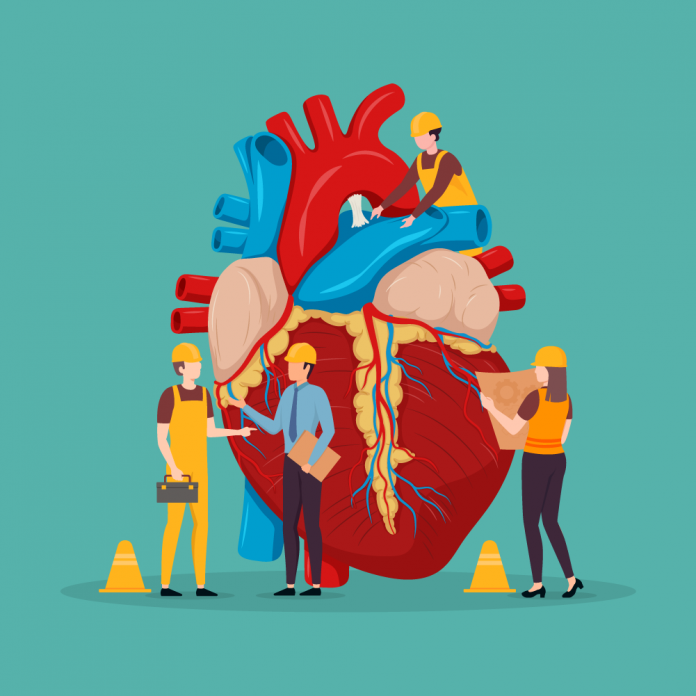 The connect between Cholesterol and CVD - The Wellthy Magazine